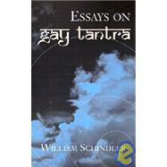 Essays on Gay Tantra,SCHINDLER WILLIAM,9780738860282
