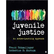 Juvenile Justice,Schmalleger, Frank A.;...,9781544300412