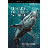 Sharks Of The World by Compagno, Leonard, 9780691120720