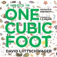 A World in One Cubic Foot: Portraits of Biodiversity by Liittschwager, David; Wilson, E. o., 9780226481234