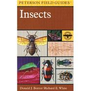 A Field Guide to Insects:...,Borror, Donald J.,9780395911709