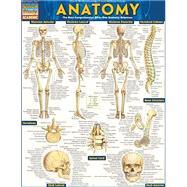 Anatomy,Barcharts, Inc.; Perez,...,9781423222781