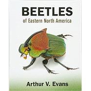 Beetles of Eastern North...,Evans, Arthur V.,9780691133041
