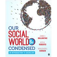Our Social World,Ballantine, Jeanne H.;...,9781544344416