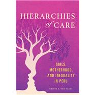 Hierarchies of Care by Van Vleet, Krista E., 9780252084614