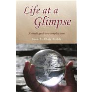 Life at a Glimpse : A simple guide to a complex Issue by Fields, Sean St. clair, 9781436345163