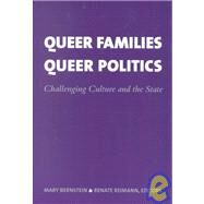 Queer Families, Queer Politics: Challenging Culture and the State by Bernstein, Mary, 9780231116916