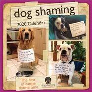 Dog Shaming 2020 Calendar by Andrews McMeel Publishing, 9781449497866