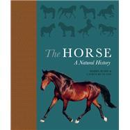 The Horse,Busby, Debbie; Rutland, Catrin,9780691178776